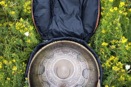 Travel bag. Photo case